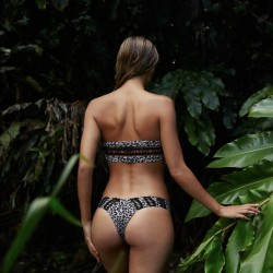 Acacia Cloudbreak Snow Leopard Bikini Bottom