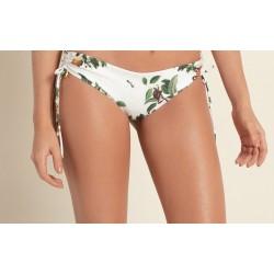 Agua Bendita Evergreen Zoe Bikini Bottom